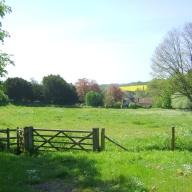 chilmark-summer-fields-use-for-blog.jpg