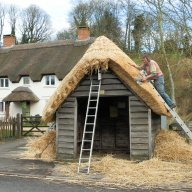 The Thatched Bus Shelter