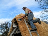 Mike's Skilled Thatching