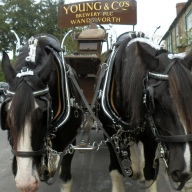 Hindon's Dray Delivery