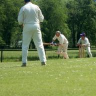 cricket-keep2.jpg