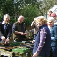 A Big Prick - A Pricking-Out for The Chilmark Gardening Club getting ready to put plants in their new poly-tunnel so their Big Plant Sale on the .... will be another success