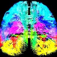 brain-image-lge-inverted.jpg