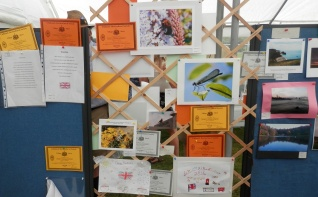 The Chilmark Show Aug 2015 (25)